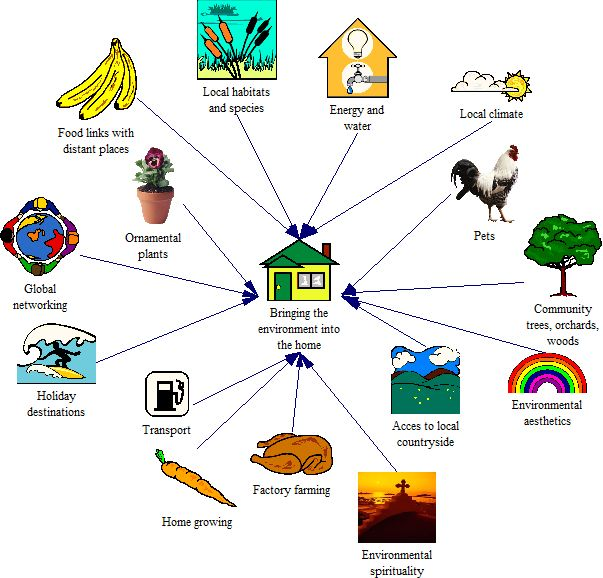 the impact of culture on ecological More about bronfenbrenner bioecological systems theory: the impact on a child's development the influence and impact on the bio ecological model system.