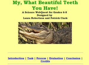 webquest-teeth